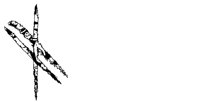 Gaelcon 30